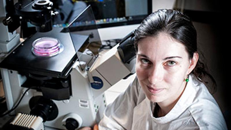 QUT - Unlocking the potential of stem cells to repair brain