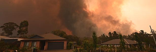 Bushfire near suburban street