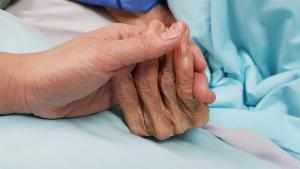 Free education to boost palliative care services